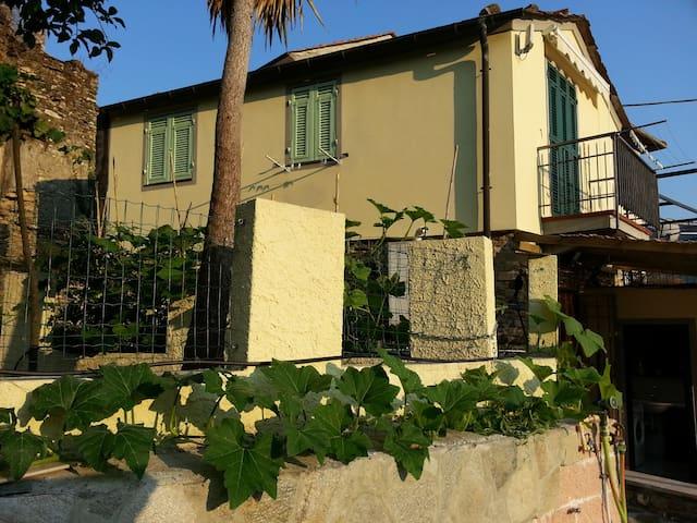 Villa tra gli ulivi a 12 mn dal mar - Stellanello - Casa