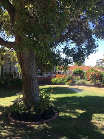 Looking for a tenant to rent a room - Booragoon - Casa