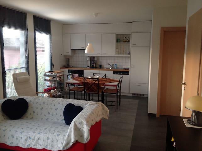 Grazioso appartamento indipendente - Agno - Leilighet