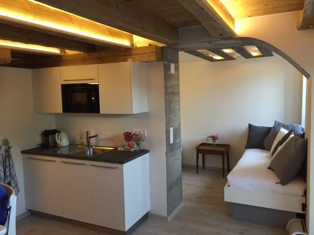 Studio de luxe à la Ferme - Cremin - Wohnung