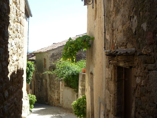 Beautiful House in Medieval Village - Caunes-Minervois - 一軒家