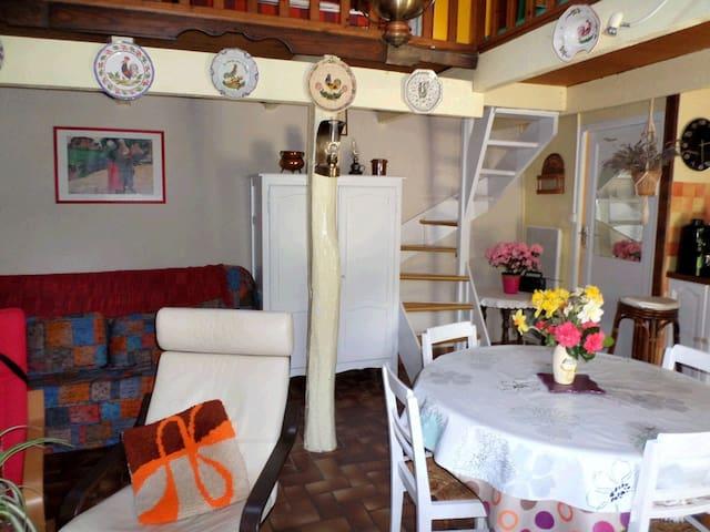 maison de pecheurs - Trébeurden - Huis