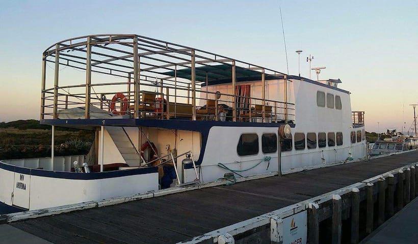 AROONA II : Double  bedroom on the water - Queenscliff - Bed & Breakfast