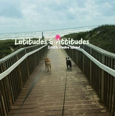 Steps from the beach! Pet Friendly! Sleeps up to 8 - South Padre Island - Lyxvåning