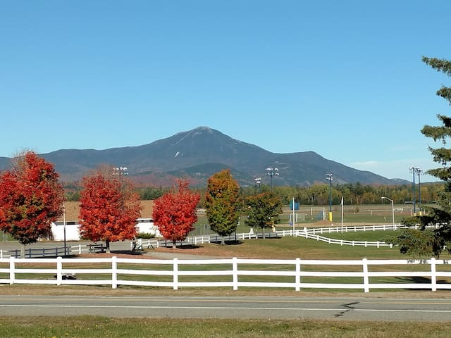 Cozy Apartment with Whiteface View - Lake Placid - 公寓