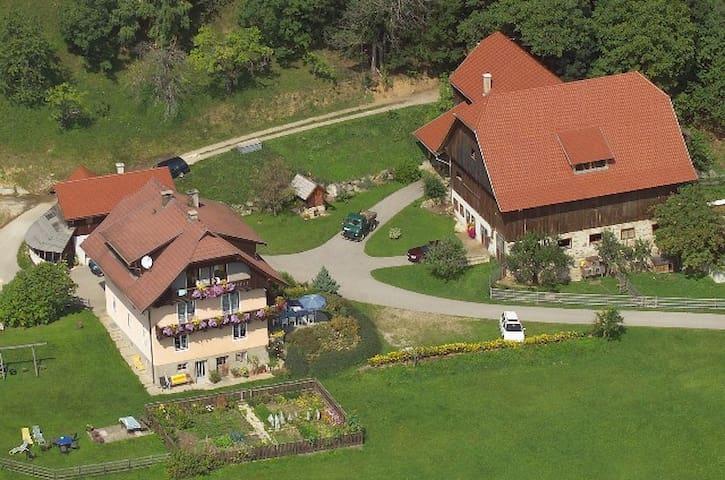 Oberrainerhof/Apartment Karawanken - Dreihofen - Departamento