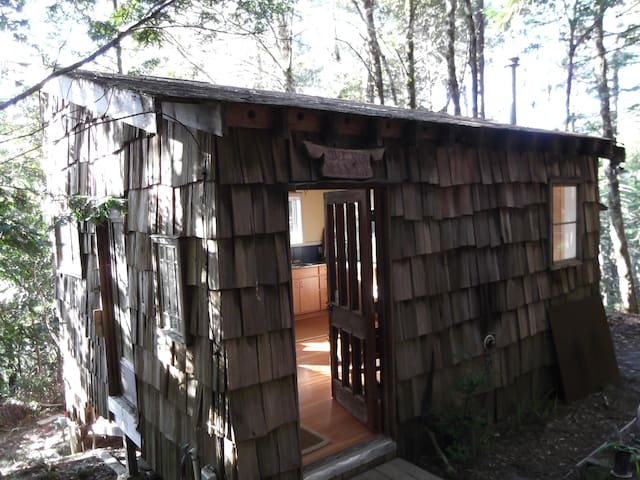 Thoreau cabin/woods/write your book - Point Arena - Cabane