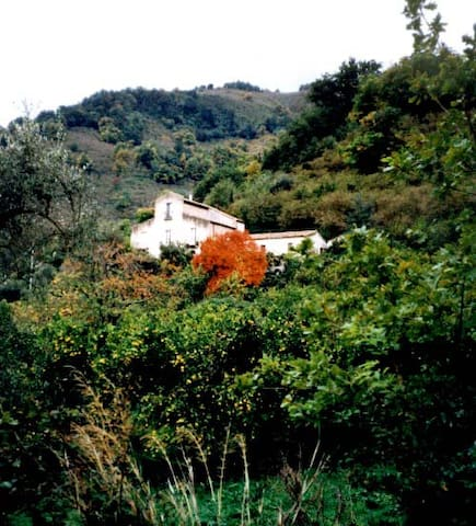 Farm-house in Sicily in the nature - Sant'Angelo di Brolo - Pousada