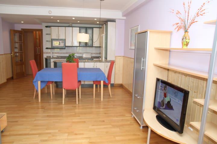 Apartamentos en el mismo centro de Estella-Lizarra - Estella - Appartement