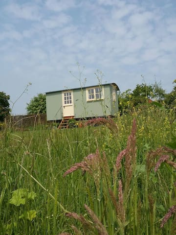 The Shepherds Hut - Musbury - Skjul