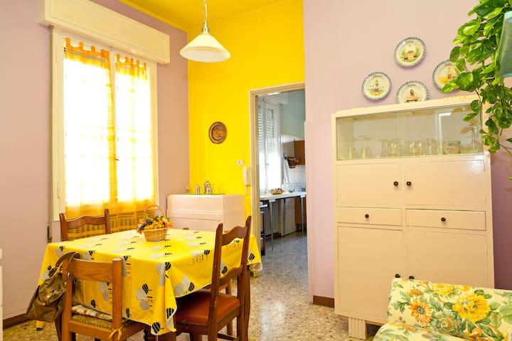Bright spacious apartment - Mirandola - House