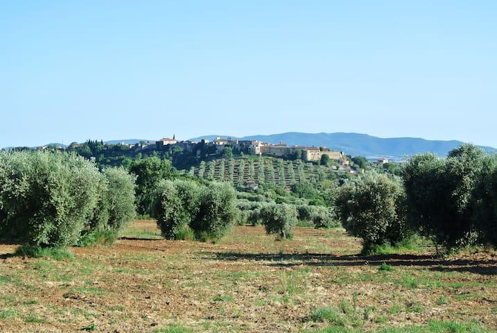 IL NIDO - Magliano in Toscana - Appartement