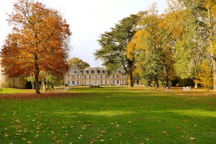 Chateau for 15 pers, near Paris - Dangeau - Şato