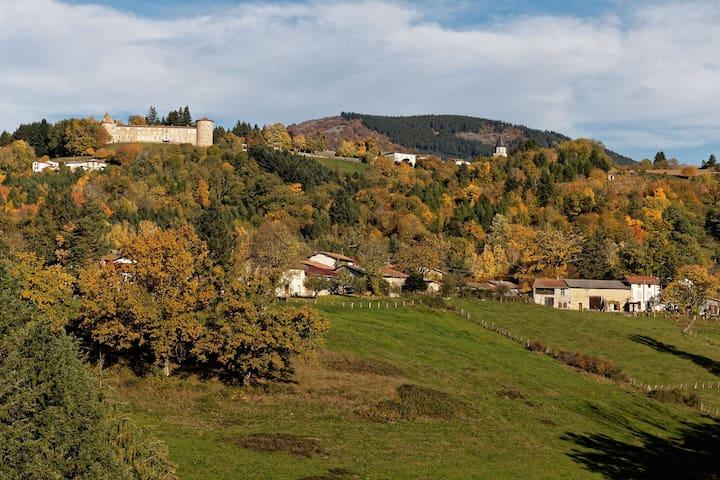 Maison avec vue panoramique - Vollore-Ville - Hus