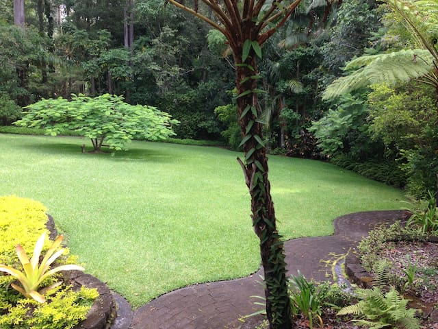 Retreat style home in the rainforest near Buderim - Tanawha - Bed & Breakfast