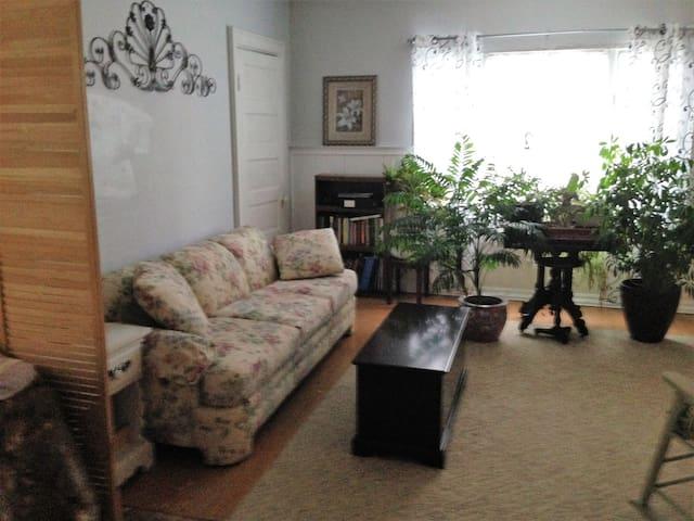 The Ideal apartment in Buffalo, New York - Buffalo - Huoneisto