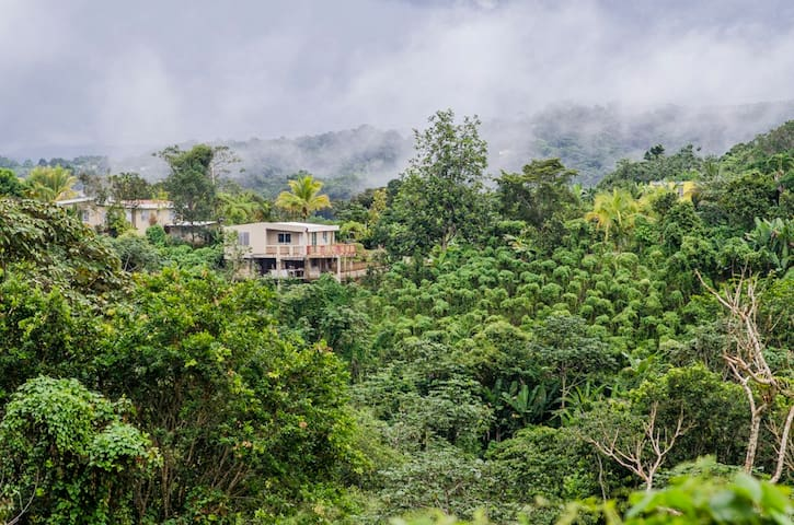 Casa Flor- Mountain Top - w/Wi-Fi - Ángeles - Ev
