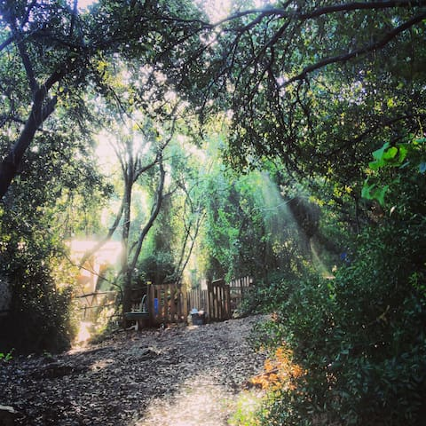 Fairy-Forest: Eco Camping Site  - Beit Oren