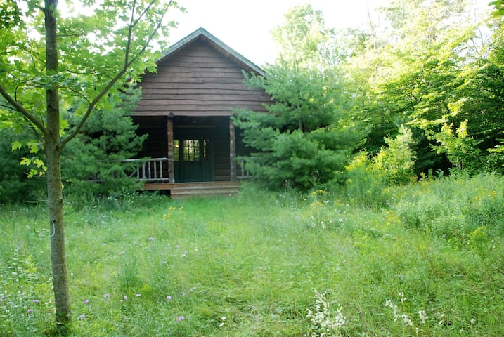 Your Forest of Tranquility - Vermontville - Zomerhuis/Cottage