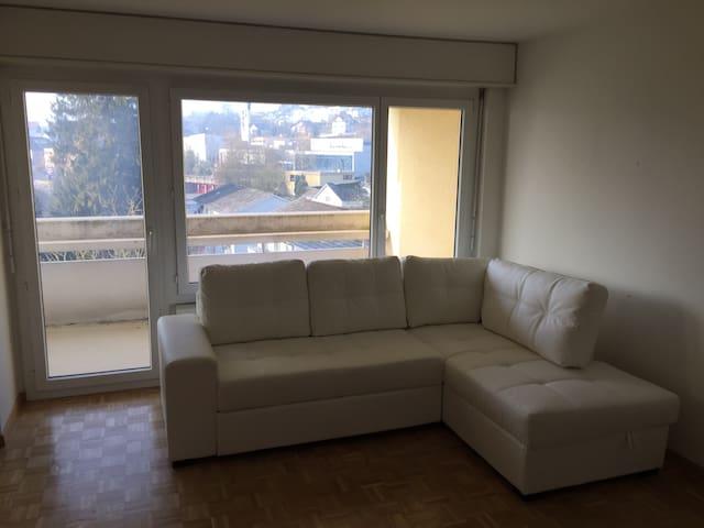 Near Zurich,big apartment w balcony - Rudolfstetten-Friedlisberg - Departamento