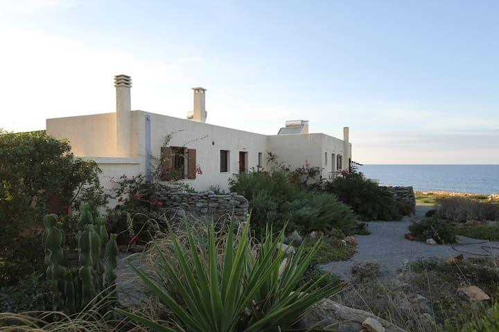 Spacious Villa on the Seafront - Agia Fotia - Talo
