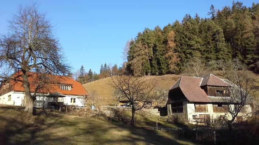 Alm, 800m Höhe. Absolute Alleinlage - Krainberg - Lomamökki