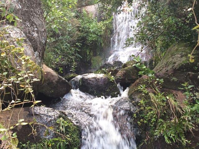 Kaimanga Falls B&B - Marahau - Hus