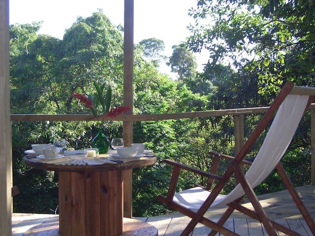 TREE HOUSE, Manuel Antonio/ with great pool !!! - Кепос - Домик на дереве