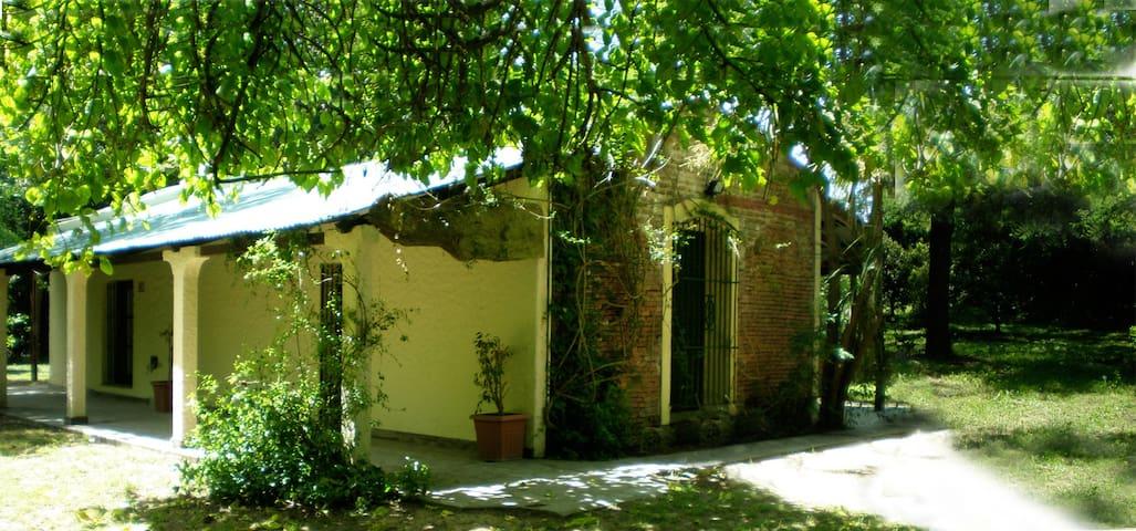 Amazing Cottage - San Vicente