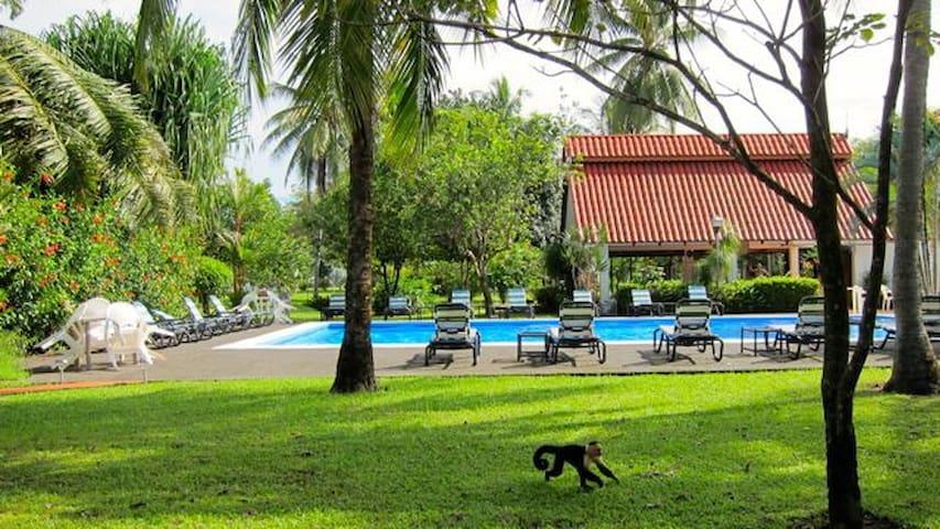 Villa deux chambres à la plage - Parrita Canton - Maison