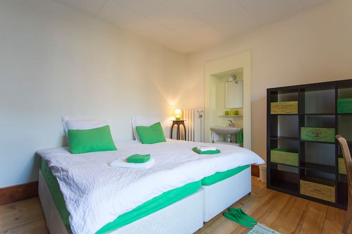 Stunning Double Room in Traditional Swiss Villa - Lavey-Morcles - Villa