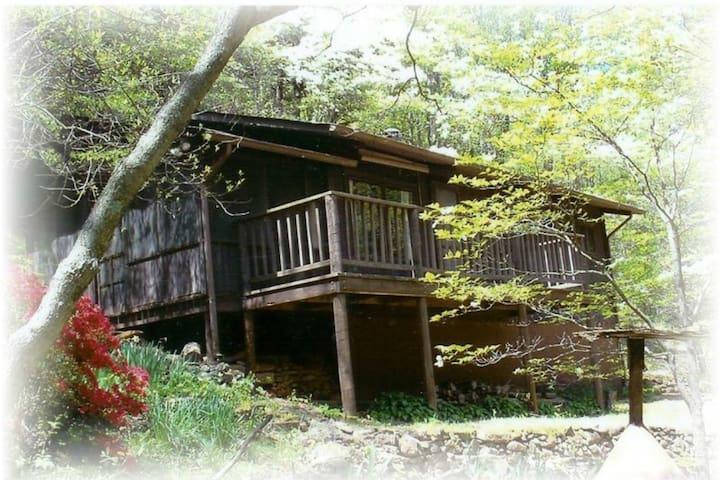 Old Rag Mountain Cabin - Syria - Stuga