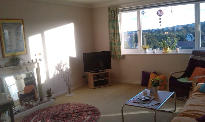 Twin room with amazing views near city centre - Eastbourne - 公寓