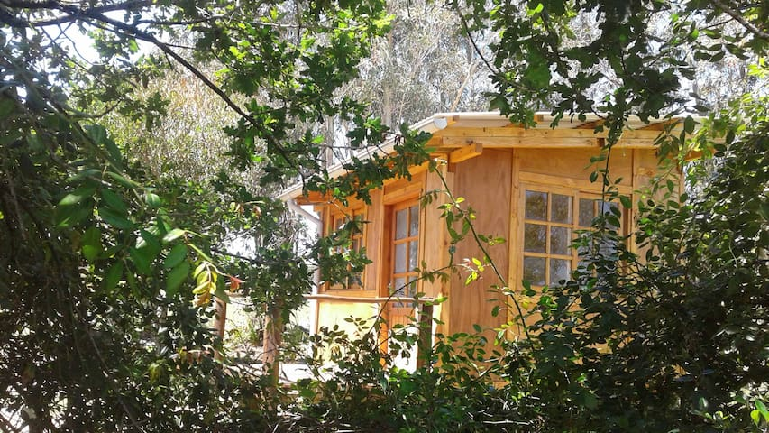 "Casa Amarita, cabaña ""Flor de Venus"" - Araminda - Stuga"