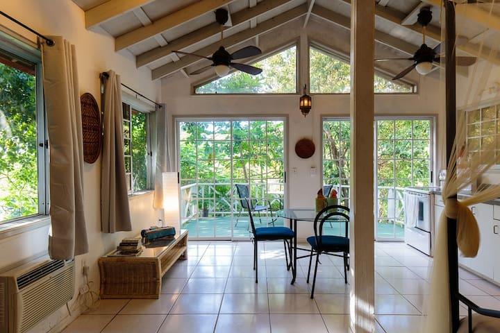 Hilltop Casita with Swimming Pool - Culebra - Lägenhet