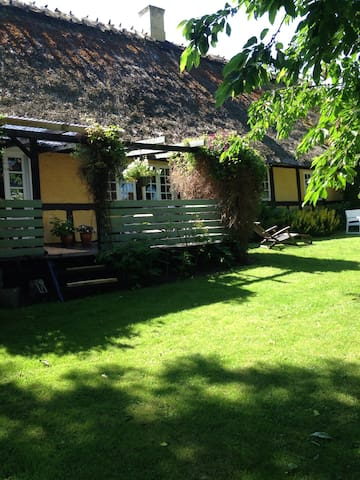Cosy large house with big garden - Odense - Casa