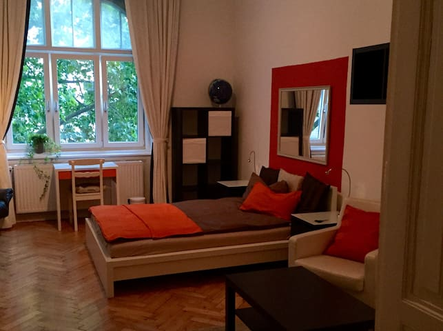 Spacious 1 bedroom private flat in prime location - Viena