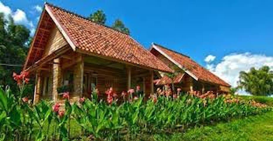 villa  - Garut - Vila