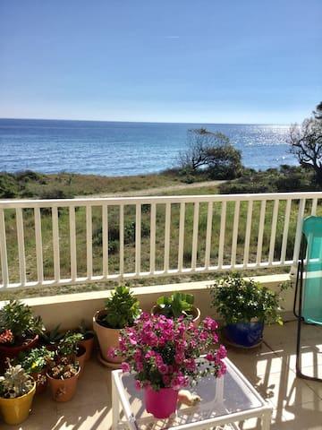 Sur la plage vue mer 4 pers confort - Santa-Maria-Poggio - Leilighet