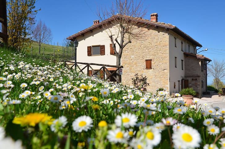 Lovely farmhouse in the Sibillini  - Montemonaco - Appartement