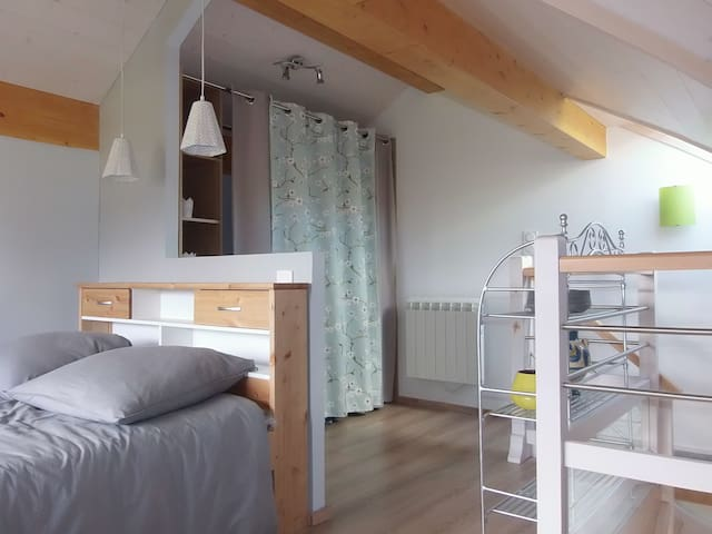 Very nice wooden chalet 50m2,near Annecy - Héry-sur-Alby - Chalet