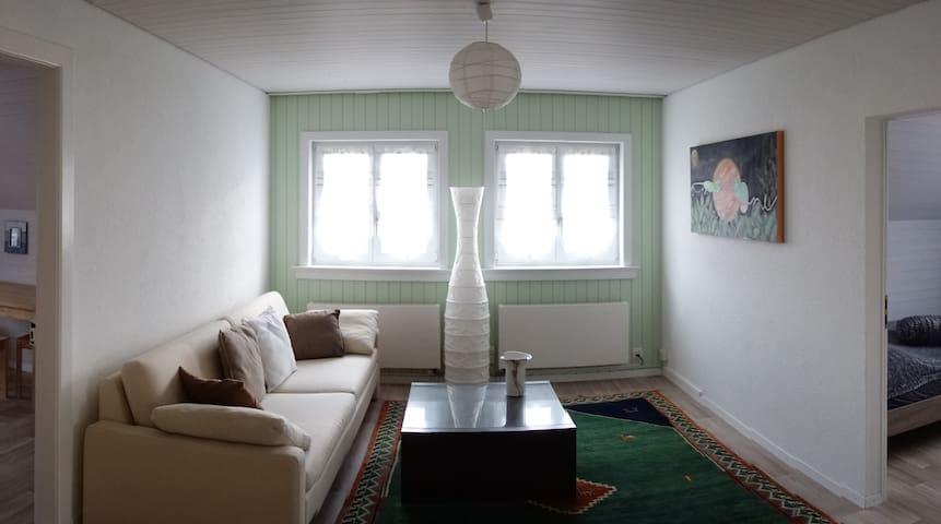 Charming apartment in Schlieren close to Zurich - Schlieren