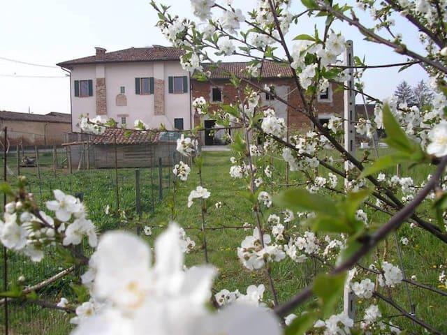 Il GIRASOLE ECOBIO 1 km dall'uscita A21 Pontevico - Gauzza - Talo