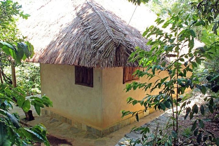 Finca la Pagua Cabaña de Barro - Xilitla  - Kulübe