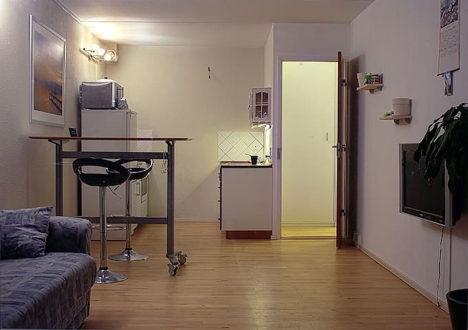 1 appartment with 2 rooms and space for 4 people - Taastrup - Apartamento