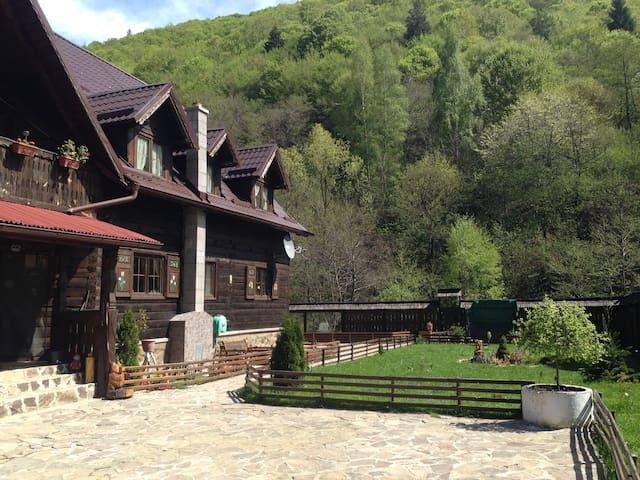Romanian traditional house of rustic elegance - Săliște - Alpstuga