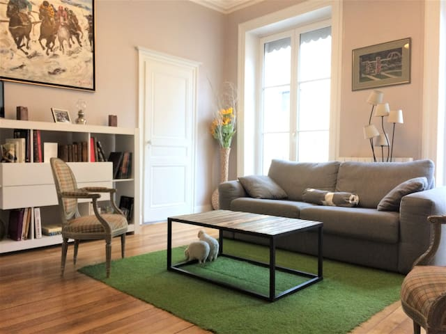 Newly renovated apt in city center - Lyon - Daire