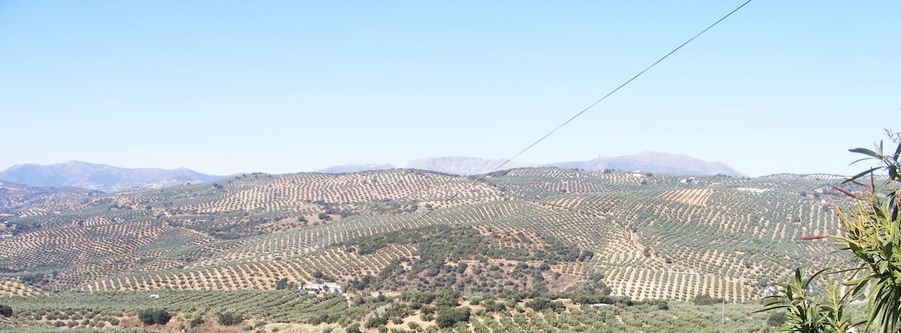 Rural Cortijo, stunning views, pool, WIFI, 5 acres - Ventorros de San José - Lägenhet
