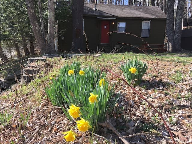 Greenfield Country Cabin - Ellenville - Hytte