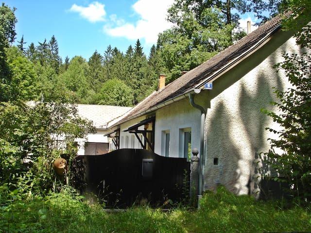 Waldhaus - Kleineibenstein